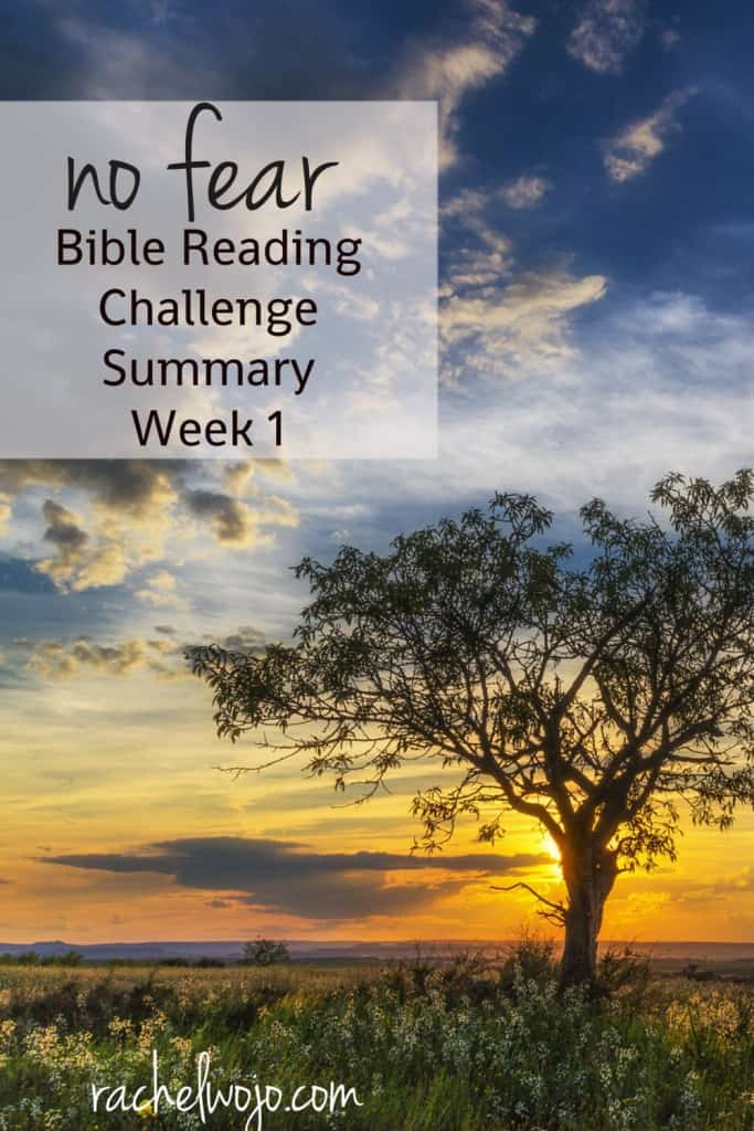 Welcome to the No Fear Bible Reading Challenge Summary Week 1! What a blessing and encouragement this Bible Reading Challenge has been so far this month! I'm going to share a little of what I've been learning each day and I hope you'll share in the comments as well. Let's get going, ready? #nofear