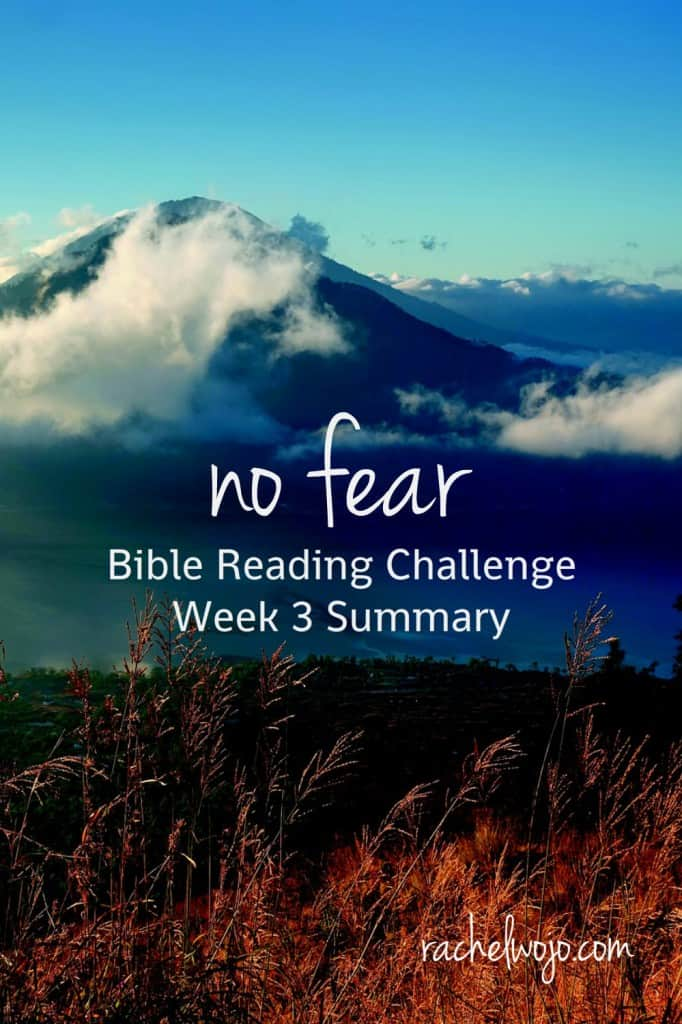 Welcome to the No Fear Bible reading challenge week 3 summary!! Wow- this month is flying! I can hardly believe that we just finished the third week of reading. So many of you have written emails and comments about how much you have LOVED this reading challenge! It's been really fun hearing from you. Let's check out what God has been teaching me through the reading so far, ready?