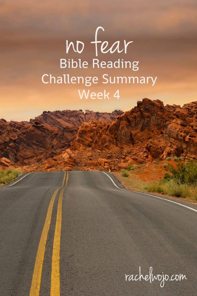 Welcome to the No Fear Bible Reading Challenge Week 4 Summary! I've had such wonderful feedback from you regarding this Bible reading plan. I've really gotten so much from it too. Let's take a glance back at what we read and studied this week!