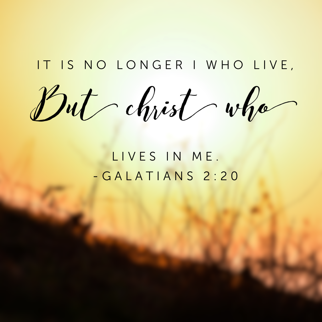 "Today I die once again. To the calls of ""that's mine!"" To the thoughts of ""me,me,me."" To the desires of ""I want."" I lay it all down again, afresh on this new day and say ""Jesus, it is all yours. Take me, mold me, use me."" Join me? #confidenceinhim#biblereading"