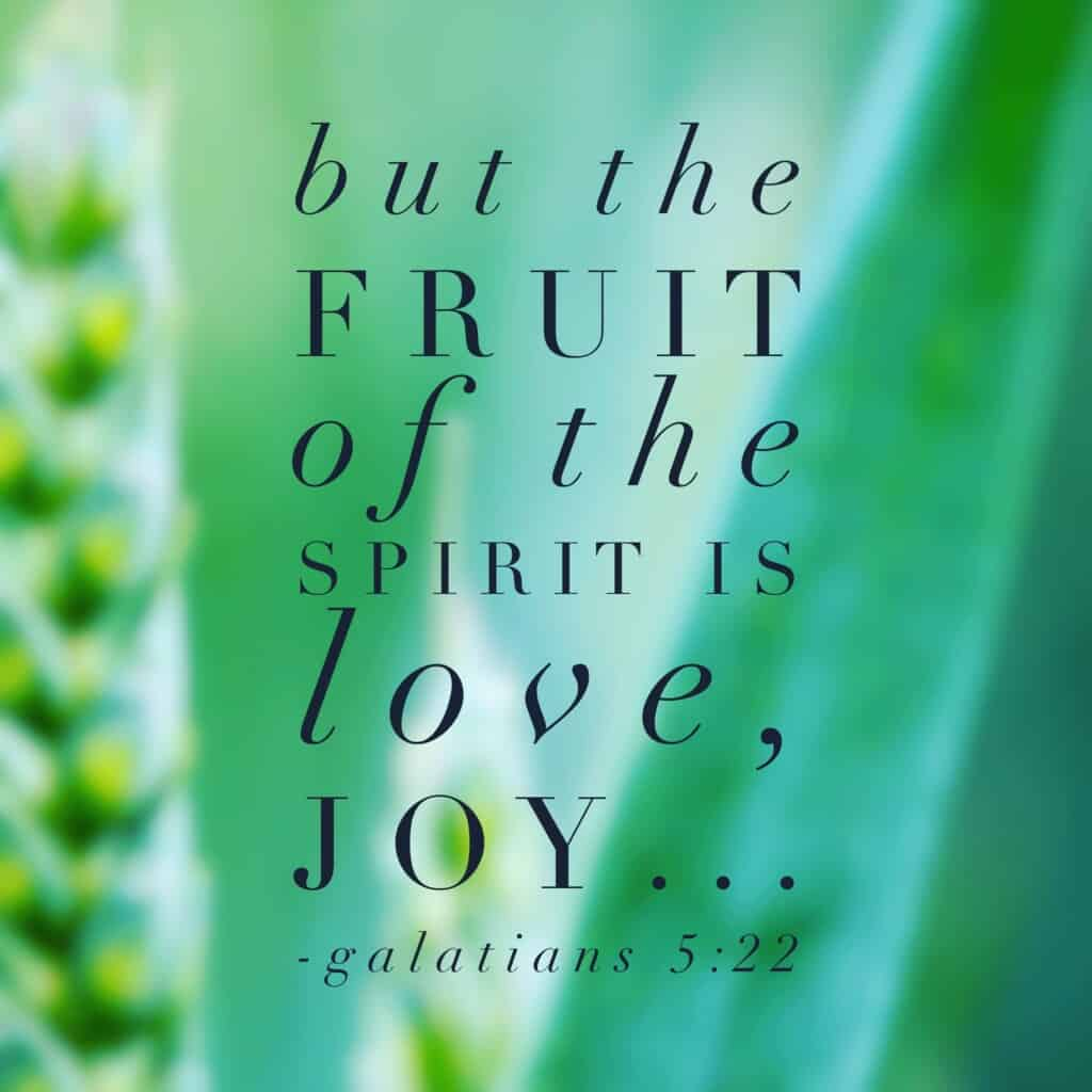 Joy- a fruit of the Spirit. When we as Christians walk in the Spirit and are in sync with his will and ways, JOY floods our souls and cannot be contained!#purejoy #biblereading