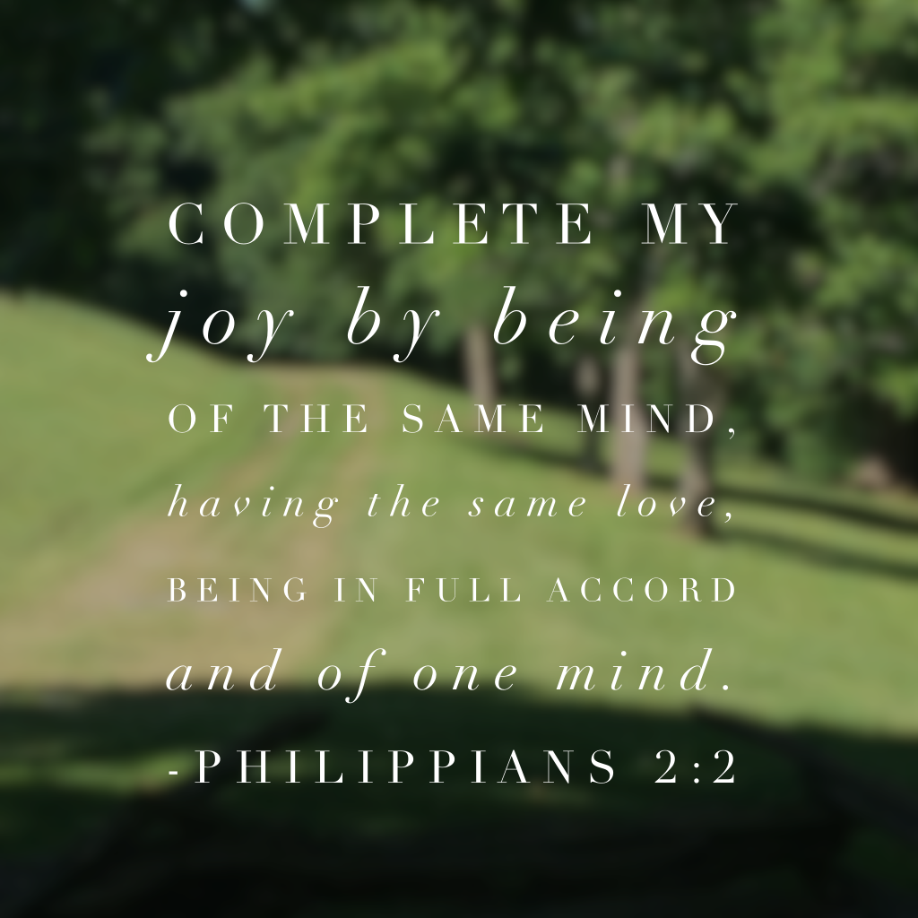 I've said it multiple times but this month's Bible reading plan , #purejoy, has personally challenged me each day. There is no doubt in my mind that Satan often steals our joy by causing disunity and strife, whether in families, small groups, circles of Christian friends, churches, or communities. Encouragement comes from Christ. Love brings comfort. Sympathy stems from the Holy Spirit. Unity brings joy.#biblereading