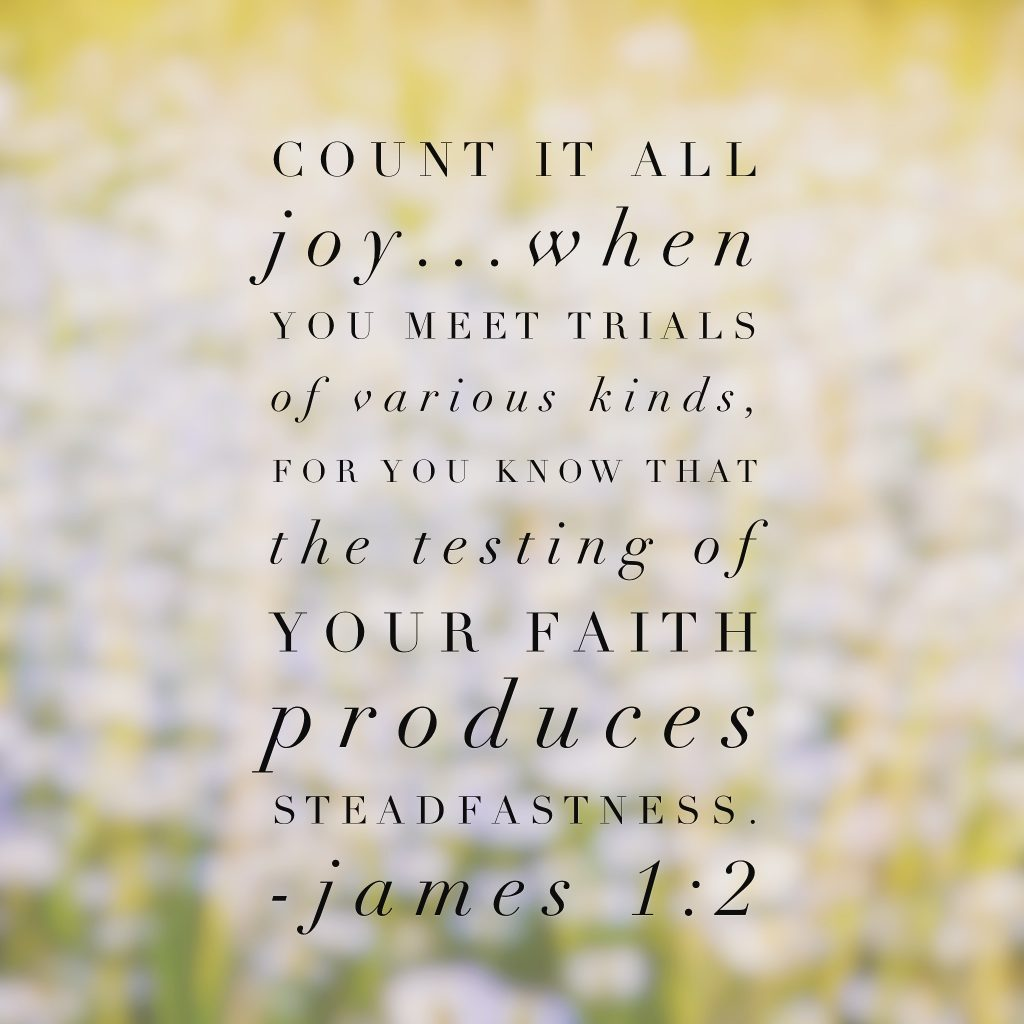 Count it all joy because of the perseverance and faithfulness developing. Another passage to reflect on deeply today! #purejoy #biblereading