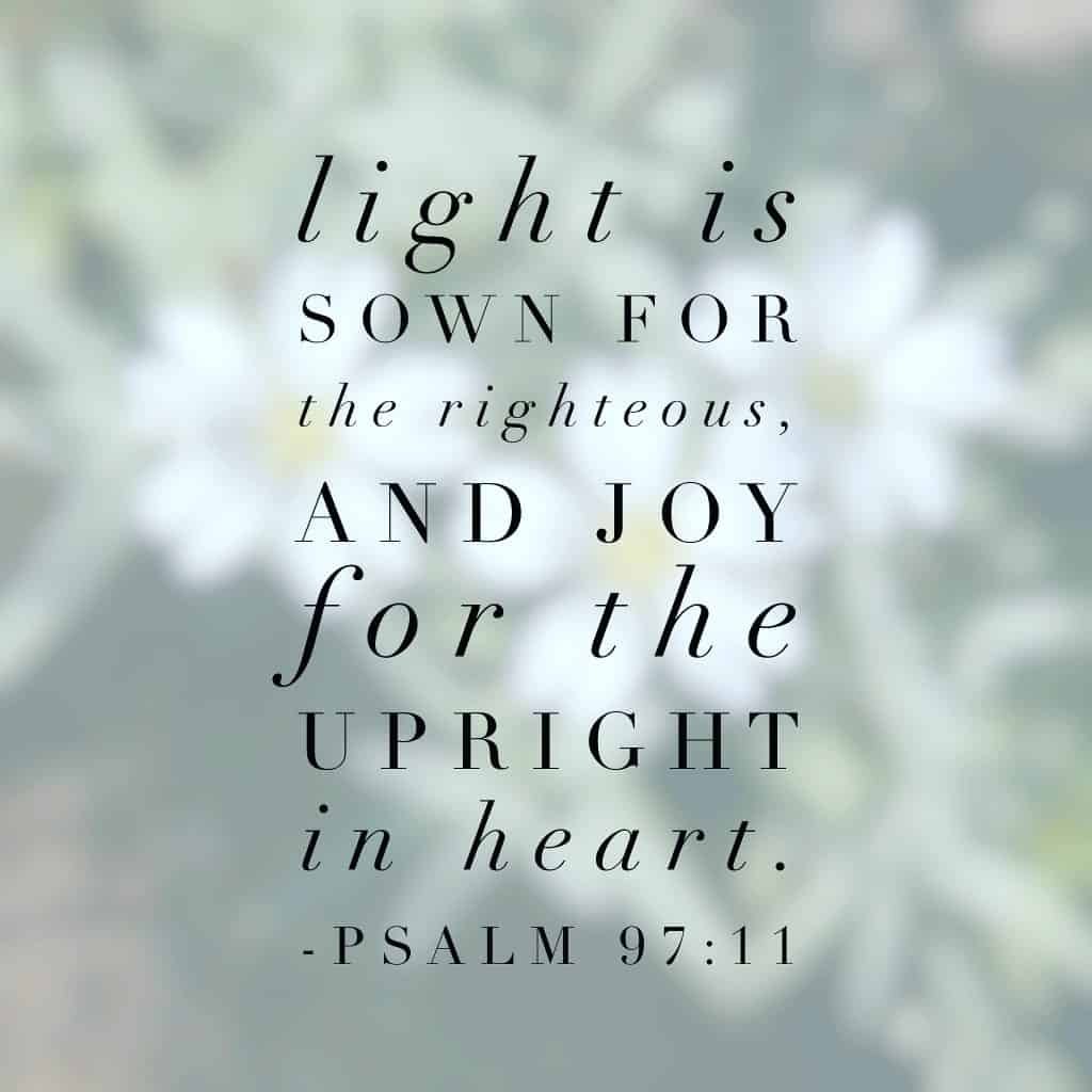 Light and joy go hand in hand. I love that thought and am clinging to it today for so many reasons.