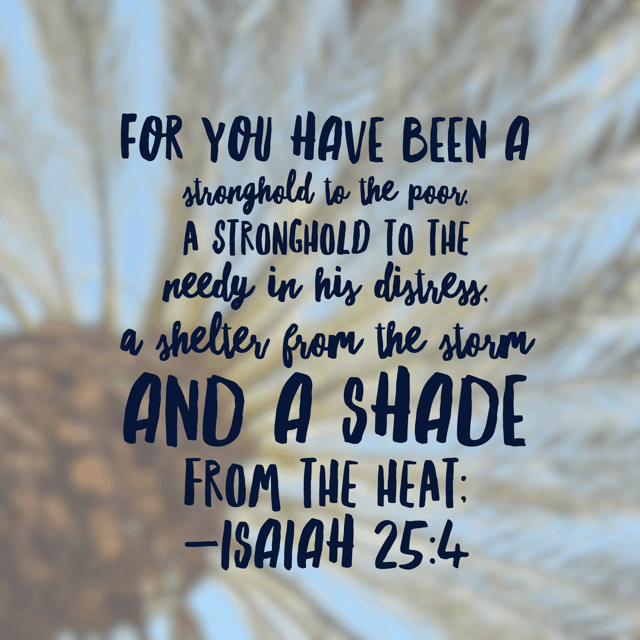 Last week the wind kicked up on the beach just before a storm and one of my younger girls became very afraid. To the point that I had to take her inside right away. When fear grips your heart, he will be your shelter from the storm. Run inside; he loves you beyond measure.#everythingbeautiful #biblereading