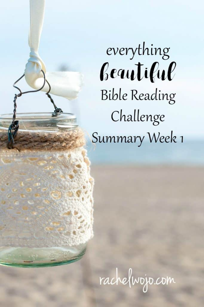 Who knew that the news of our nation would bring so much sorrow and grief this week? To say that we are challenged to see beauty is a severe understatement. But isn't that what a Bible reading challenge does for us? We are challenged to read, soak up and apply God's Word to everyday living. So don't give up on the reading! Let's take a peek at the Everything Beautiful Bible reading summary week 1. #everythingbeautiful #biblereading