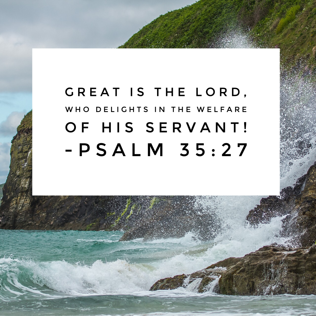 When I look back over my life and reflect on God's provisions, I am speechless. Oh how we can praise him for how he has provided! #praisehimanyway#biblereading
