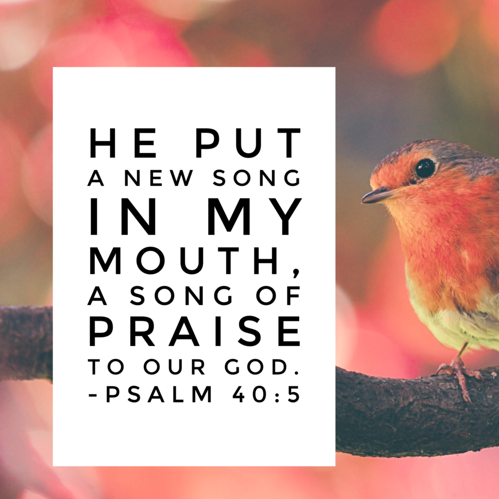 My old song was a sad one. It lacked energy and joy. The tune was a minor key. But the new song? Abundantly beautiful. The new song is one of praise and thanksgiving and I'm singing it today! You too? praisehimanyway #biblereading