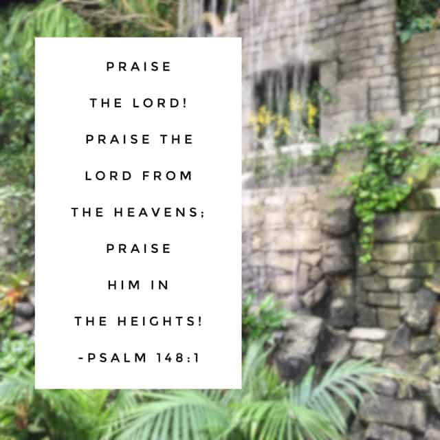 For his name alone is exalted! (v. 13) When we set our hearts to sing his praise in the morning, it is easier to continue a life of praise throughout the day. For he alone is worthy! #praisehimanyway#biblereading