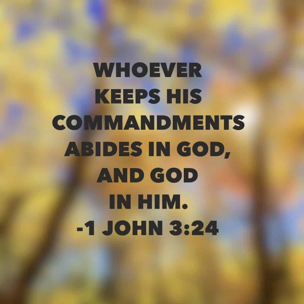 Abide. To stay with, continue, remain in or close to. God is always with us but when we obey and abide, His presence is much sweeter and more real to our hearts. Have a thriving (and abiding) Thursday! #neveralone #bibleverse