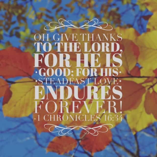 "Before the busy preparations of a holiday, I'm soaking up today's#biblereading passage. ""Ascribe to the Lord the glory due his name; bring an offering and come before him! Worship the Lord in the splendor of holiness..."" Worship and thanksgiving work together beautifully!#withthanksgiving"
