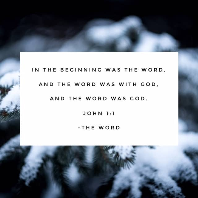 The Word became flesh. Jesus, the Word of God, the Son of God, came to live among us. What a reason to rejoice! #namesofGod #biblereadingplan#biblereading