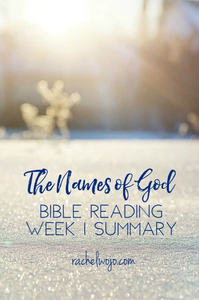 What a wonderful Bible reading plan we have enjoyed together so far! I don't know about you, but each day has seemed to be exactly what I have needed to remember. Let's check out the summary of what we've learned so far in the Names of God Bible reading summary week 1.