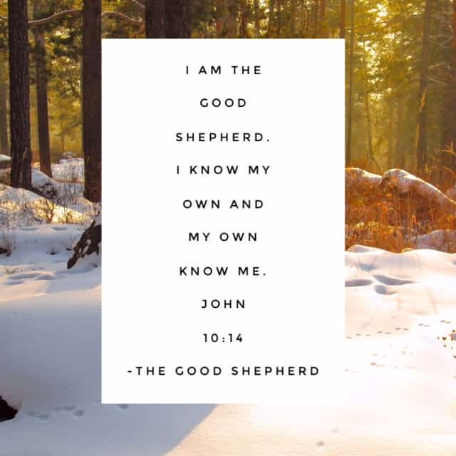 He knows my name He knows my every thought, He sees each tear that falls And hears me when I call … this is the Good Shepherd. #namesofGod#biblereadingplan #biblereading Day 27