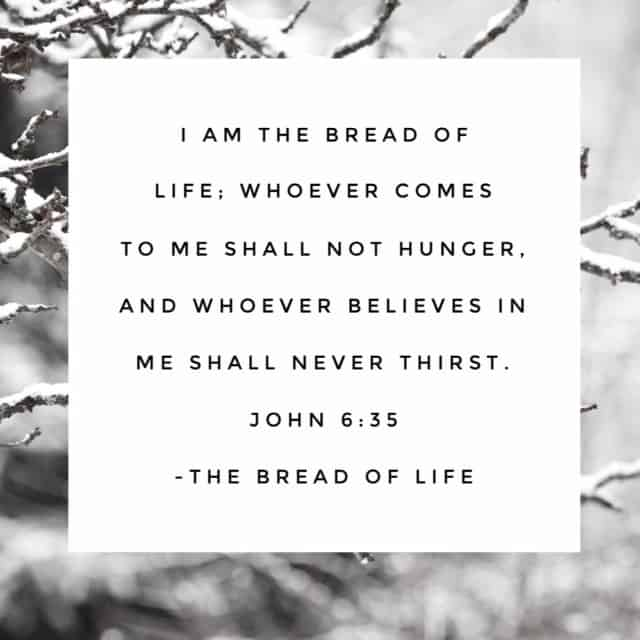 He offers sustenance like no one else can. Jesus, the Bread of Life. The One who will feed your soul and hydrate your heart. The One who strengthens your spirit and supplies all your needs. The One who fills your hunger and fuels your desires. #biblereadingplan #biblereading#namesofGod Day 28