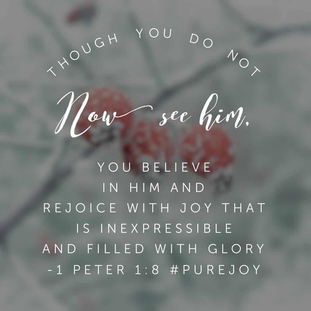 When our circumstances make it difficult to see God's work with human eyes, we can still rejoice for the living hope Christ has given us through the power of his resurrection! Now if that doesn't start the new year off right! #purejoy#biblereadingplans #biblereading Day 2