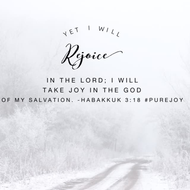 "Yet. You see, there is always something before the ""yet."" A bad set of circumstances. An unexpected change. A diagnosis. A dysfunction. A disgrace. A disappointment. No matter your ""yet"" there is reason to rejoice. Your God has saved you! #purejoy #biblereading#biblereadingplan"
