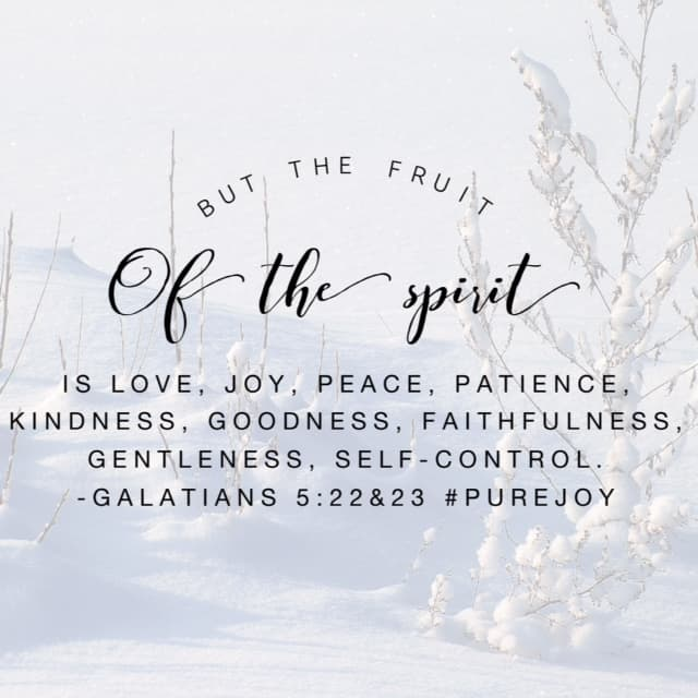The Holy Spirit lives inside of you, filling you with joy! Now there's a great reminder to begin Tuesday! #purejoy#biblereading #biblereading #journaling Day 17