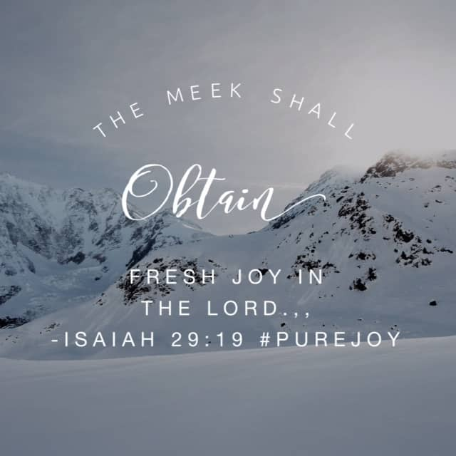 He chooses to revive and restore. He gives hearing to what previously fell on deaf ears. He provides insight to the circumstances they were previously blinded by. And in God's economy, the meek shall obtain fresh joy!! What beautiful verses to reflect on today! #biblereading #purejoy #biblereadingplan#journaling