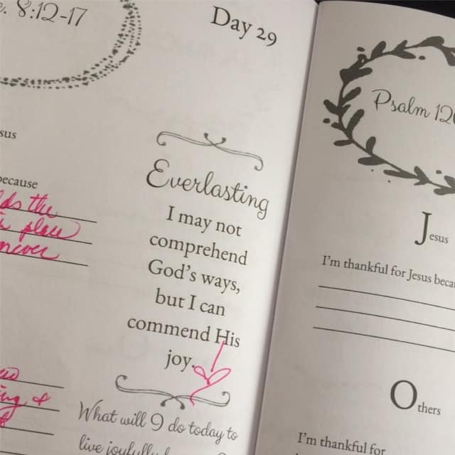I can always recommend the joy of the Lord for strength! Happy Sunday! #purejoy #biblereadingplan #journaling