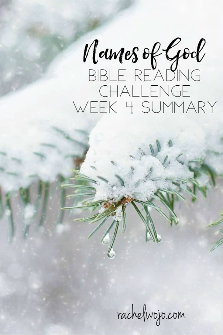 Names of God Bible Reading Challenge Final Summary