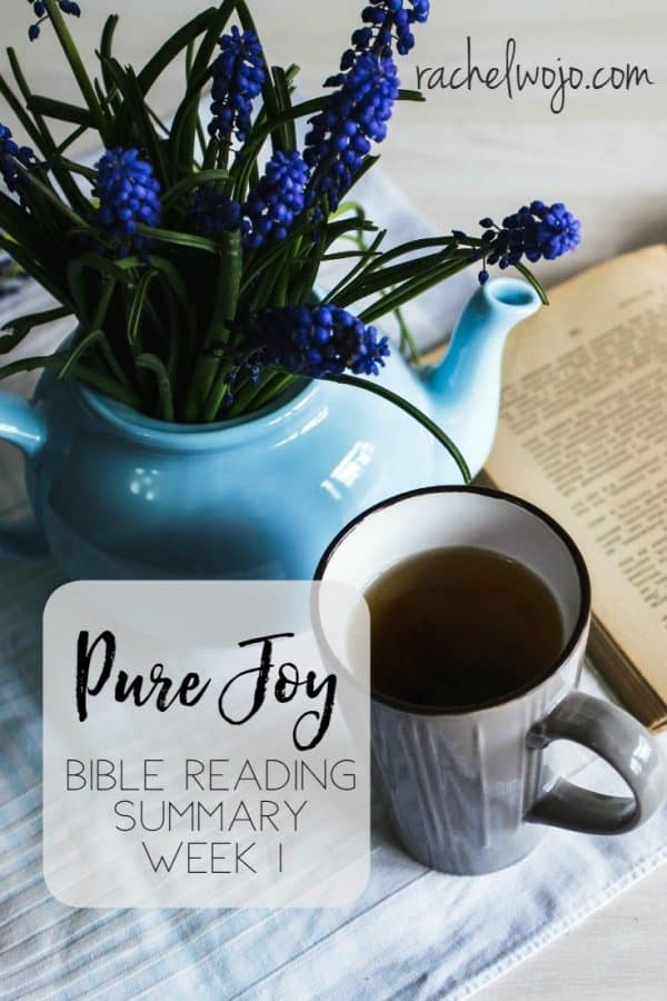 Pure Joy Bible Reading Week 1 Summary