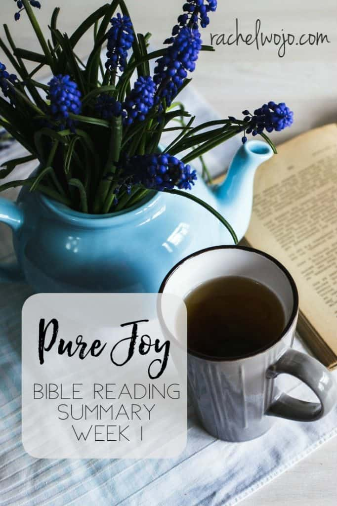 Let's check out the Pure Joy Bible Reading Summary Week 1!