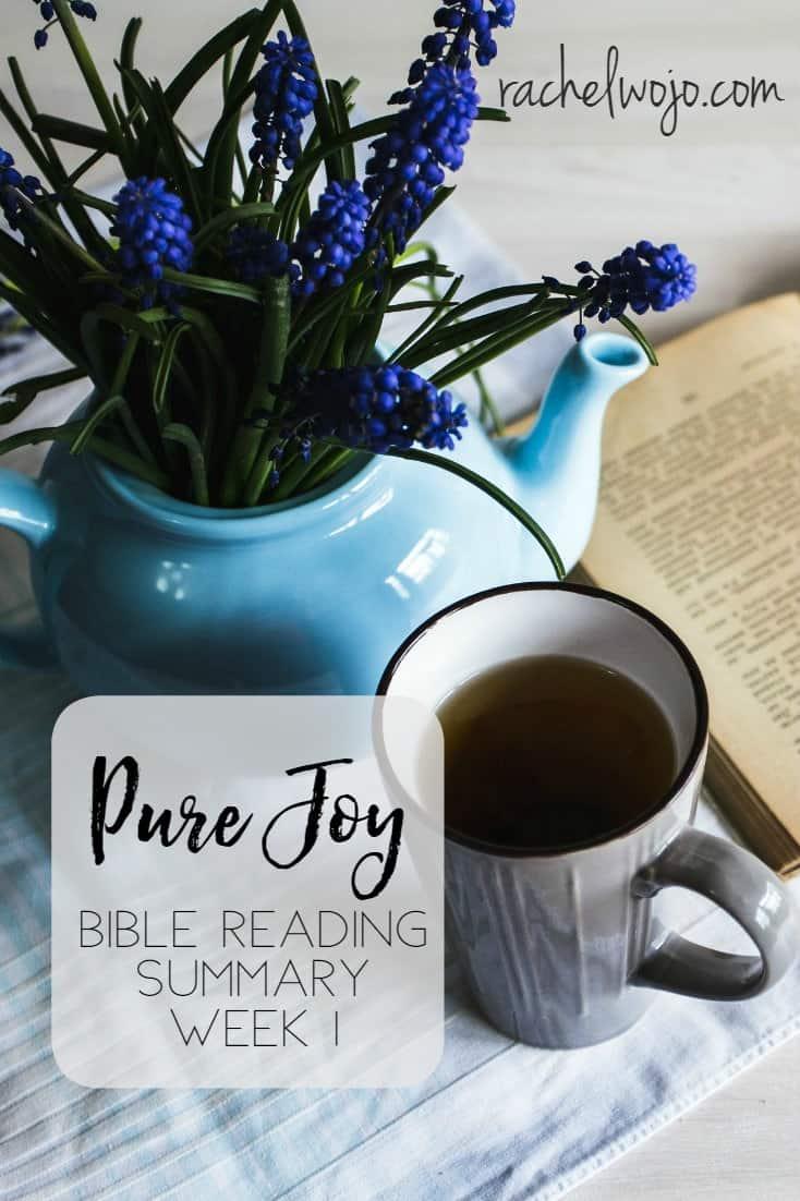Pure Joy Bible Reading Week 1 Summary