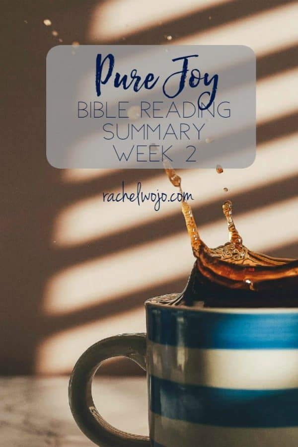 Pure Joy Bible Reading Summary Week 2