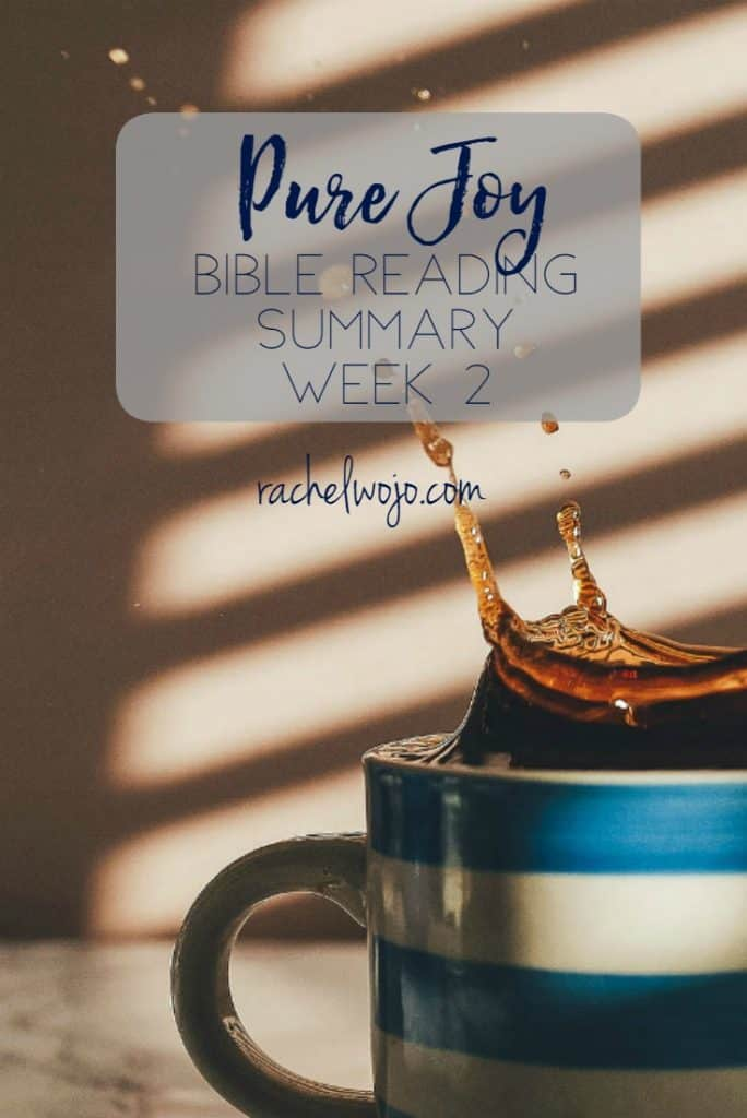 Welcome to the Pure Joy Bible reading summary week 2! I can hardly believe that we have already completed two weeks of this month's Bible reading plan. I've already been both challenged and charged so much by the Scriptures. I pray it's the same for you! Let's check out a summary of this week's passages. Ready?