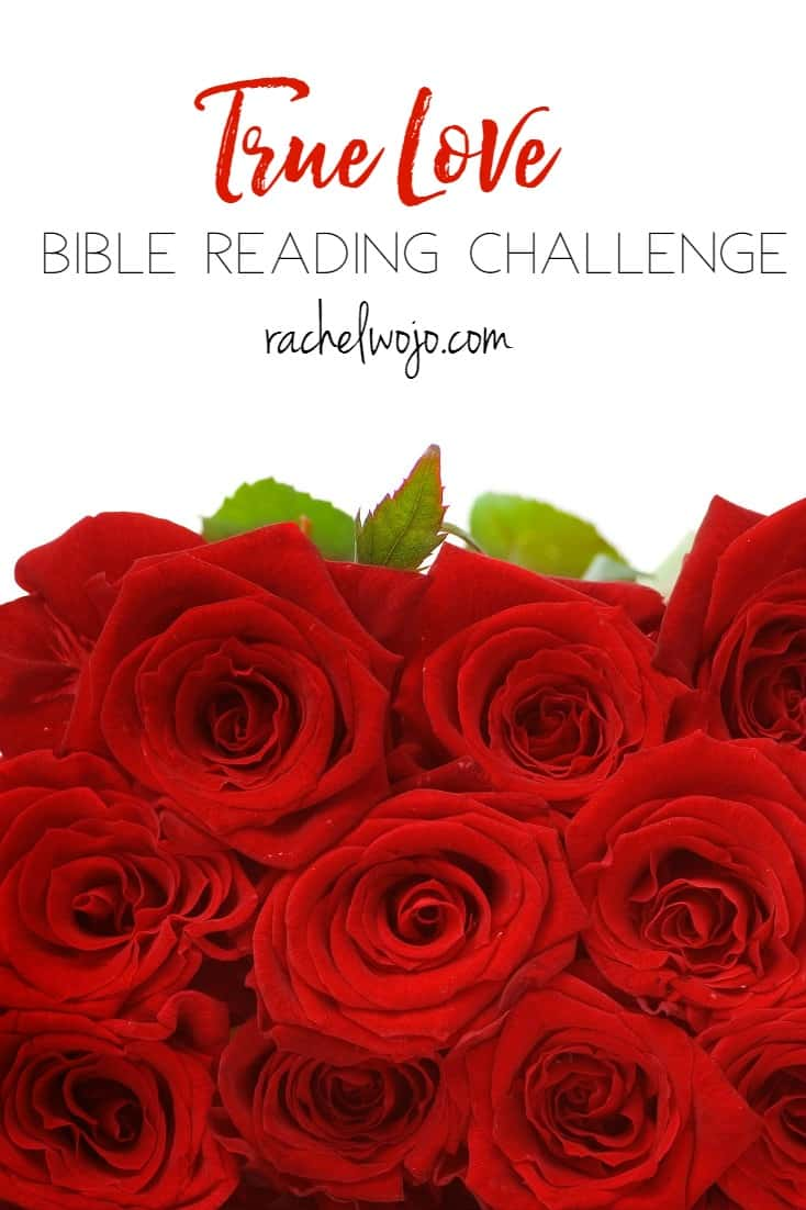 True Love Bible Reading Plan and Journal Challenge