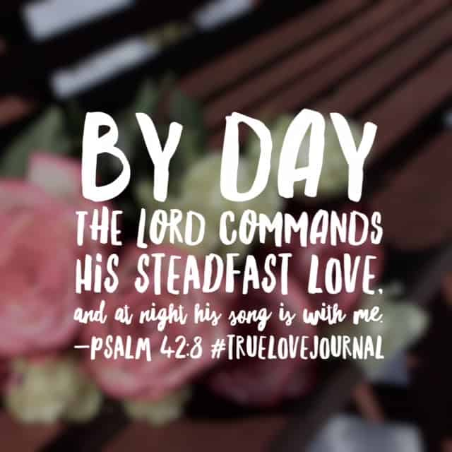 By day and by night, his love never leaves us. Thankful for another day of God's love surrounding me! Happy Sunday! #truelovejournal#biblereadingplan #biblereading