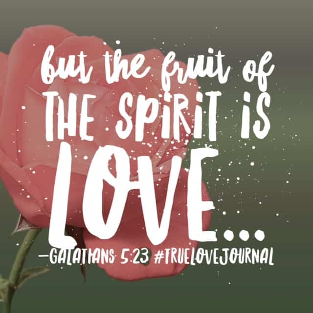 I wonder if love came first on the list of the fruits of the Spirit because everything else would follow naturally afterward? Hope your Saturday is saturated in the love of Christ. #biblereadingplan#biblereading #truelovejournal