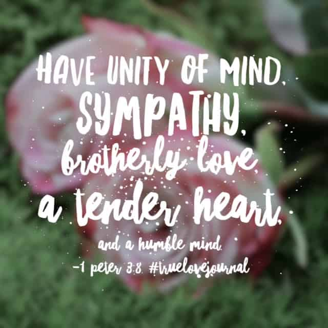 The world is experiencing a severe shortage of sympathy. Jesus, break our hearts for what breaks yours. May Christian hearts unify in communities across this nation, showing tender hearts of love to one another and the world. Have a marvelous Monday! #truelovejournal#biblereadingplan #biblereading