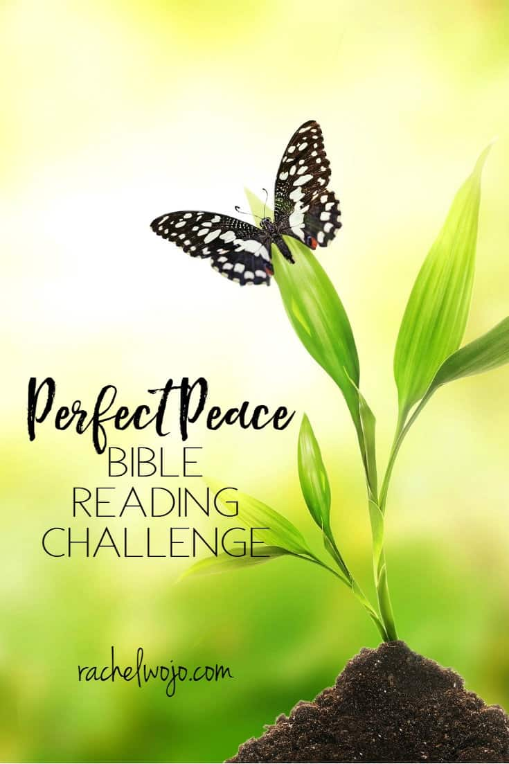 Perfect Peace Bible Reading Plan and Journal Challenge
