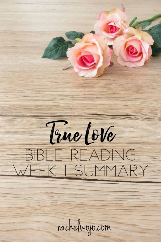 Friday is here and so is the Bible reading summary for the week! Hooray! How is your Bible reading going this week? I think February is one of those months that is a little blah. My mama used to say that while February is the shortest month of the year, it seems the longest of the year and sometimes, I sure believe that to be true. However, can I just reiterate that the True Love Bible reading plan and journal is challenging me in the truest sense of the word? I'm loving it! So let's check out the True Love Bible reading challenge week 1 summary!