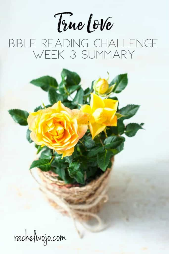 I can talk all day about how much I love God and others, but if I don't live it? It profits nothing. So I'm learning to live loved and learning to love others. Loving is a learning process. So different than the world views love, isn't it? Let's check out the True Love Bible reading summary week 3. Ready?