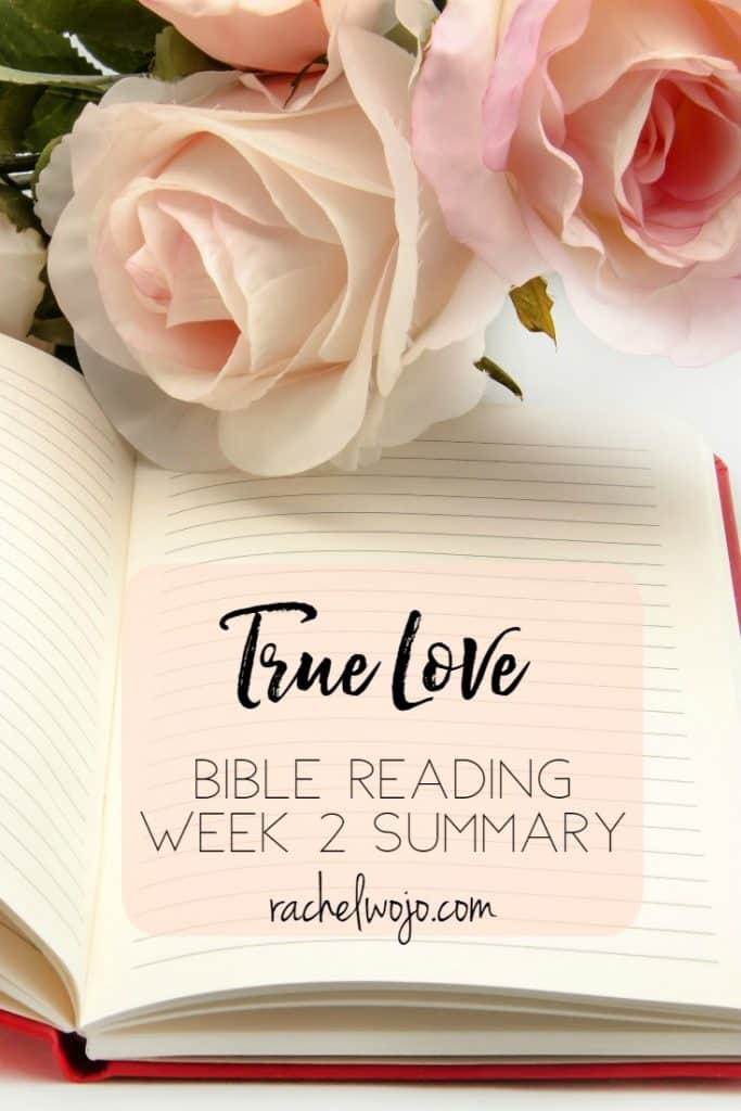 Happy Friday! Today we take a glance back over the last week of monthly Bible reading challenge passages. Having a focus on the love of Christ this month has been such a blessing to me! I can't believe we are already over halfway finished with this Bible reading plan. Let's take a look at the True Love Bible reading summary week 2. Ready?