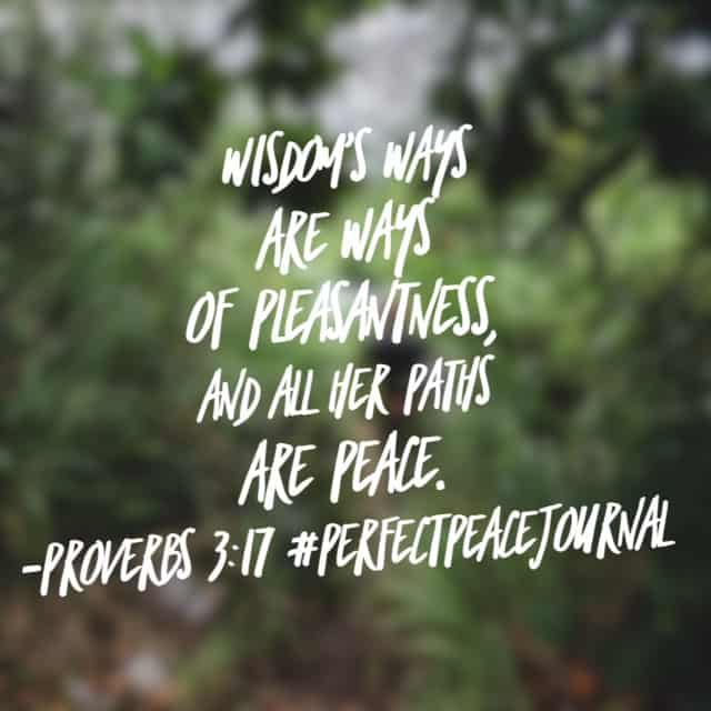 Wisdom's ways. It's tempting to get on our soap boxes and shout our opinions from the rooftops, especially in this day and age of social media. But wisdom's ways! Asking the Lord for his wisdom today. His word promises peace will be the result! Happy Friday! #perfectpeacejournal #biblereading#biblereadingplan