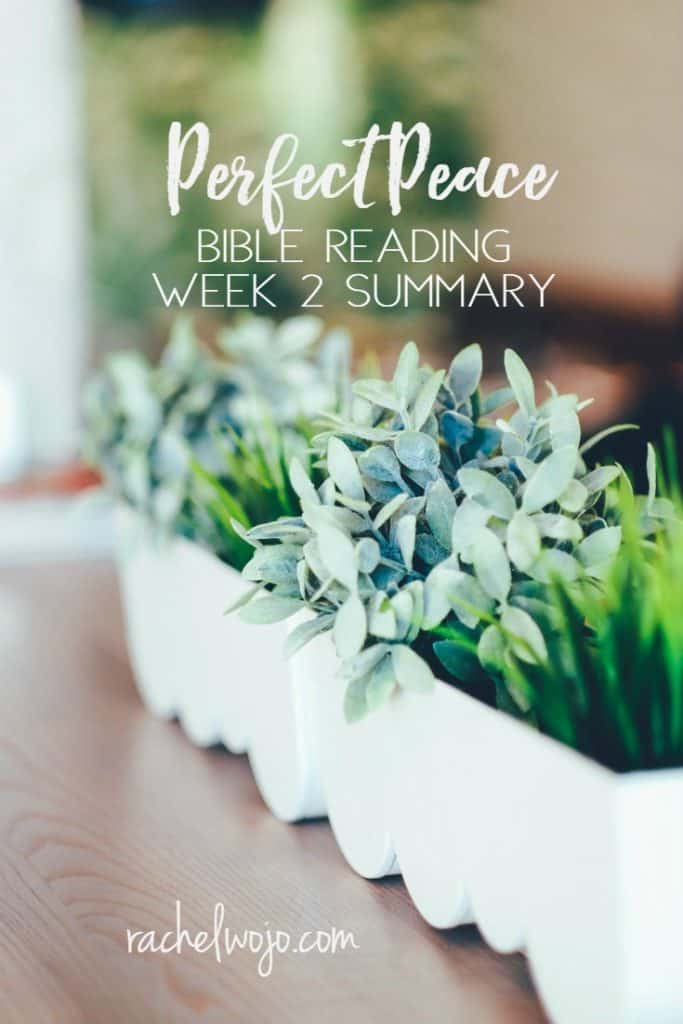 Whether you soaked it all up and didn't miss a single day, or had a week of struggling to be faithful to God's Word, enjoy the Perfect Peace Bible reading summary week 2. Ready? #perfectpeacejournal