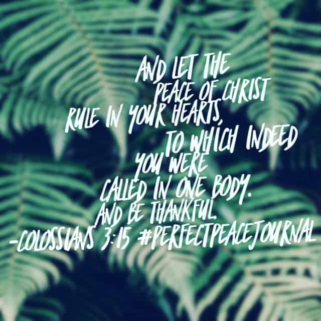 Remember to embrace the love of the Ruler of your heart today! His reign over all we do brings peace. Happy Friday! #perfectpeacejournal #biblereadingplan#biblereading