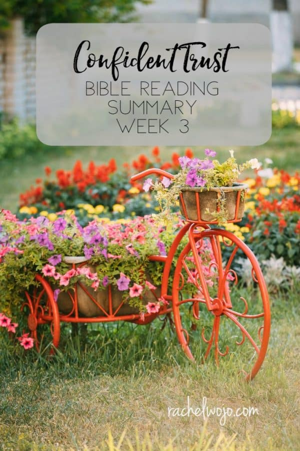 Confident Trust Bible Reading Plan Summary Week 3