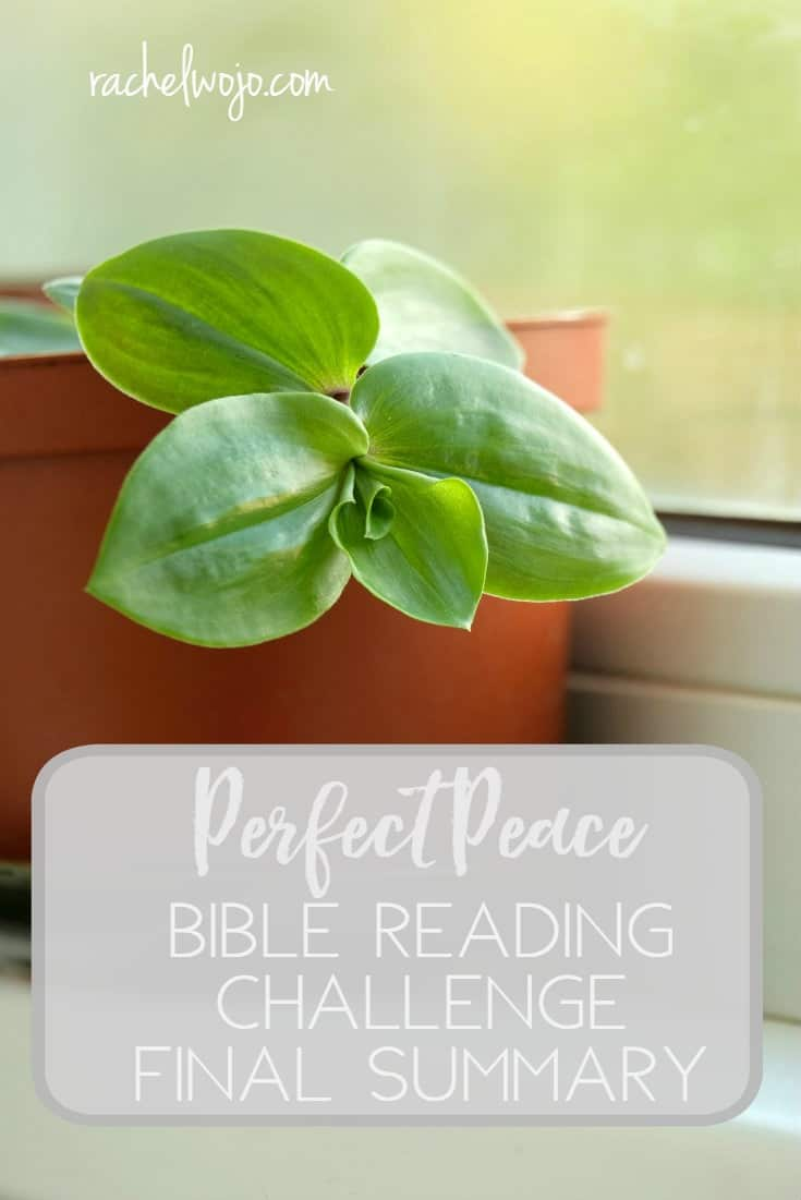 Perfect Peace Bible Reading Challenge Final Summary