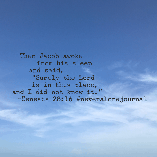 I wonder how many times I have missed the presence of the Lord because I was wrapped up in my own little world, asleep to the depth of relationship that Jesus wanted for and with me. Lord, awake our hearts to be alert and fully aware of your presence in our lives. #neveralonejournal #biblereadingplan #biblereading