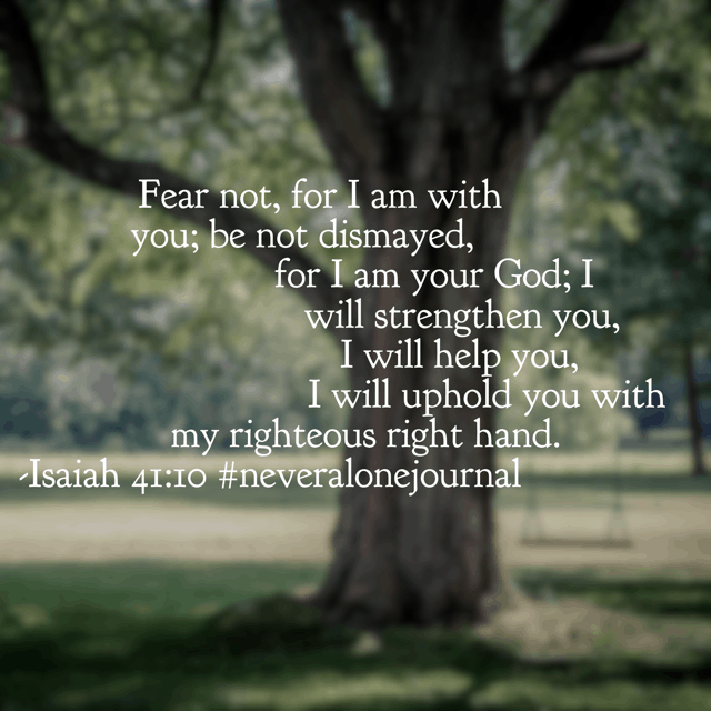 Our God continually reminds us not to be afraid because he is with us. He knew we would forget his presence and forgetting would cause us to fear. Through holding our hand, he holds us up. So thankful. #neveralonejournal #biblereadingplan #biblereading