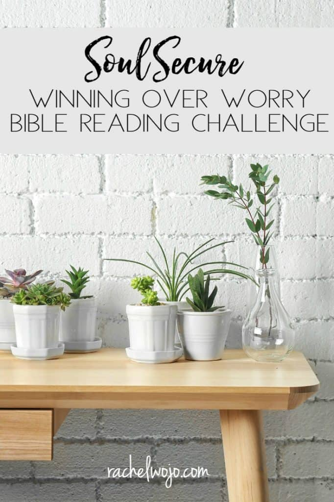 It's time to announce the June Bible reading challenge and I have a few thoughts to share with you. Check out the Soul Secure: Winning Over Worry Bible Reading Plan & Journal Challenge!
