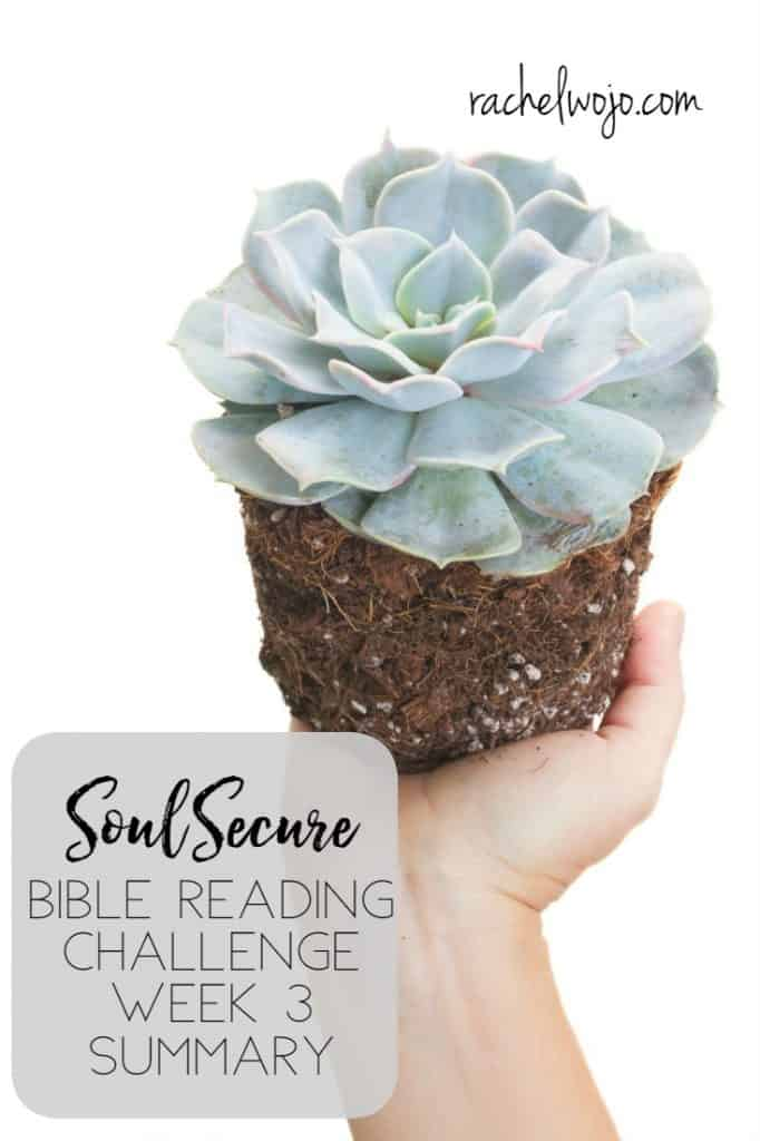 Hello and welcome to the Soul Secure Bible Reading Challenge Week 3 Summary! I'm so thrilled to be working through this Bible reading plan on winning over worry!! I feel like I can't fully express how much this particular Scripture reading plan has stirred my heart to stop excusing worry and instead, address it promptly. I pray that you've been encouraged to do the same. Before we read through the last week of the challenge, let's check out last week's summary.