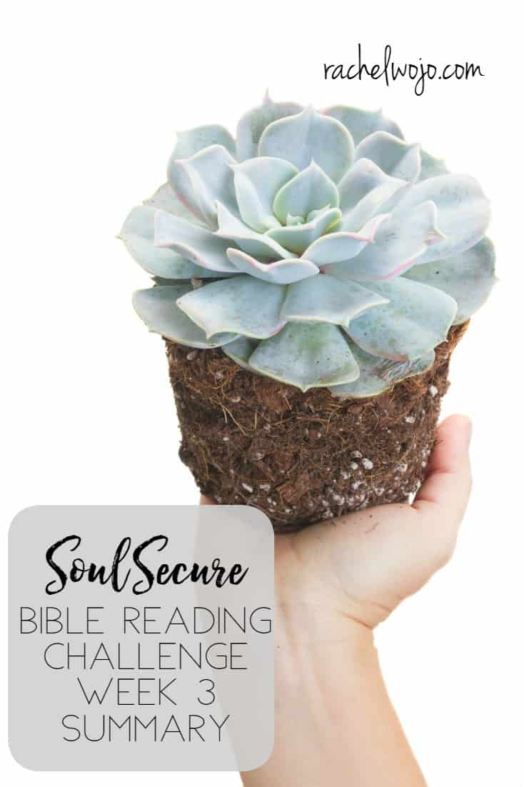 Soul Secure Bible Reading Challenge Week 3 Summary