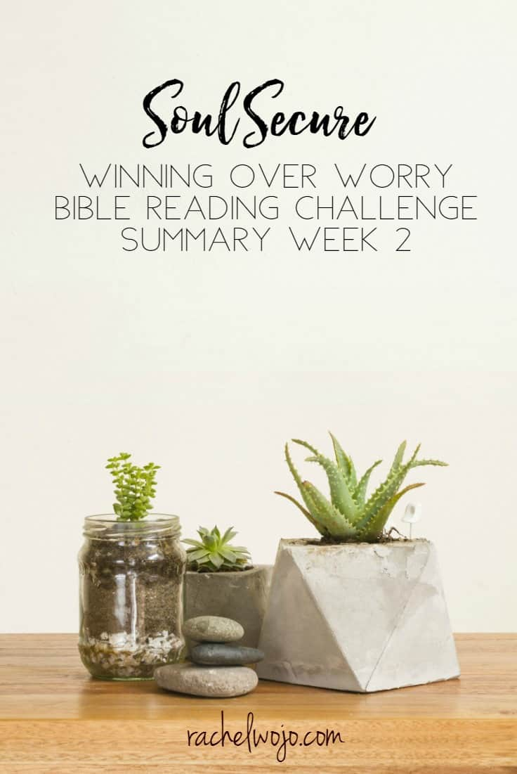 Soul Secure Winning Over Worry Bible Reading Summary Week 2