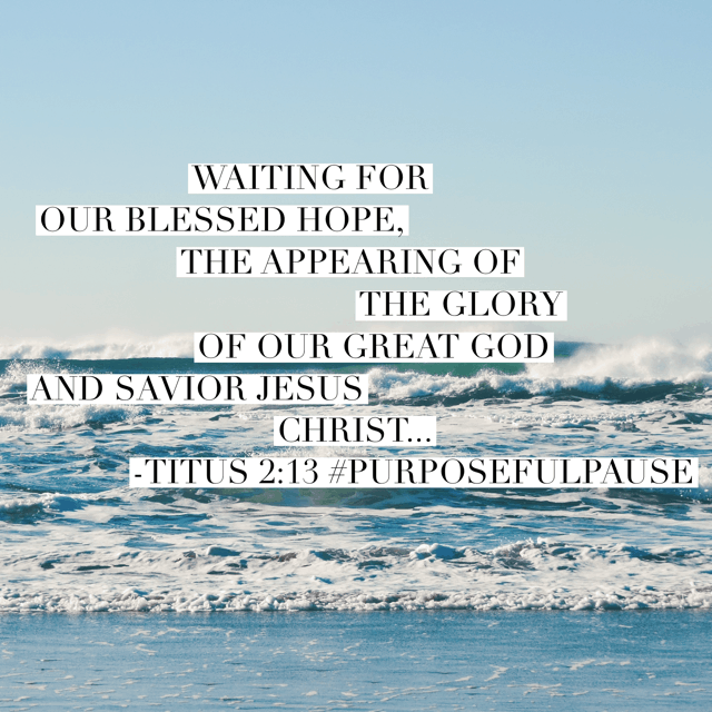 Ultimately our waiting on earth is all in the name of waiting for our blessed hope in Christ. What an incredible day it will be to experience heaven with Jesus! Hold on to your hope in Christ today, no matter your wait for earthly circumstance changes!! #purposefulpause #biblereadingplan#waitingonGod #biblereading